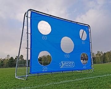 Best Sporting Fußballtor grau 240 x 170 x 85 cm sehr stabil, mit Blauer Torwand mit 5 Schusslöchern - 5